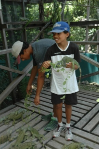 Brandon and Andrew feeding iguanas